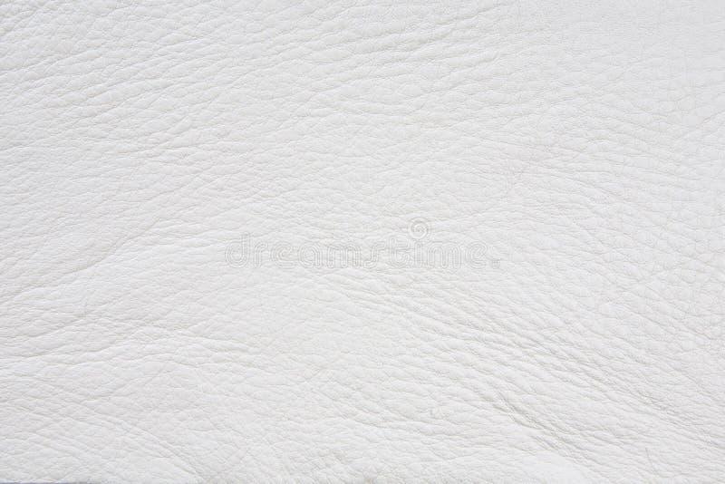 Fond en cuir de texture image stock