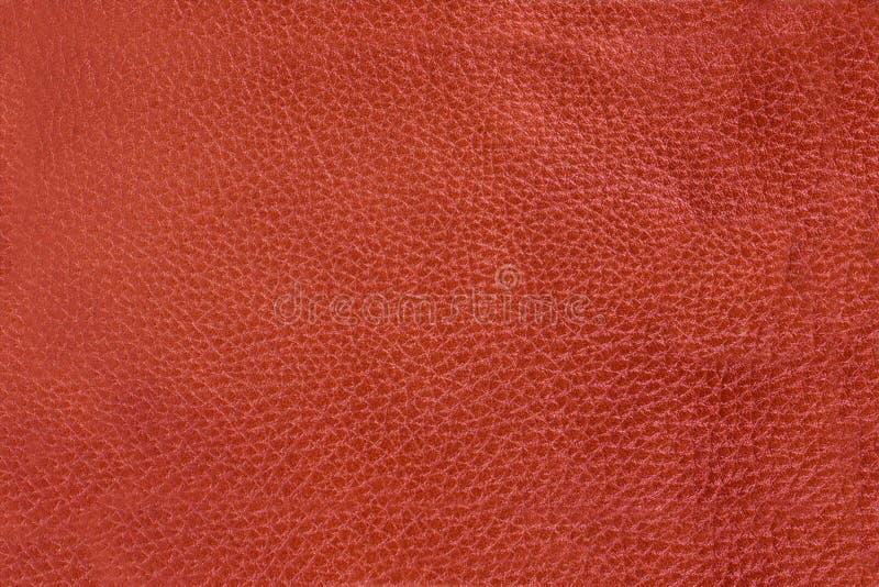 Fond en cuir de texture photographie stock libre de droits