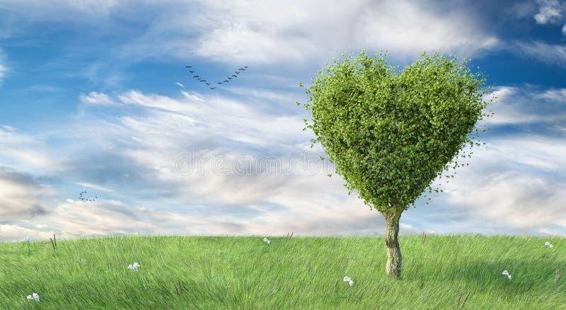 Fond en forme de coeur vert de paysage d'arbre photo stock