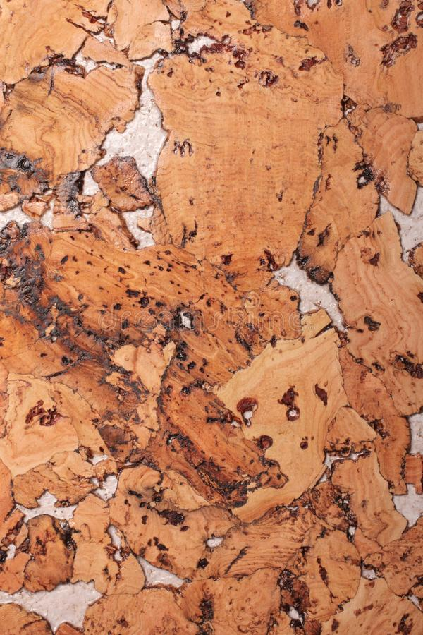 Fond en gros plan et texture de la surface en bois de panneau de li?ge photo libre de droits