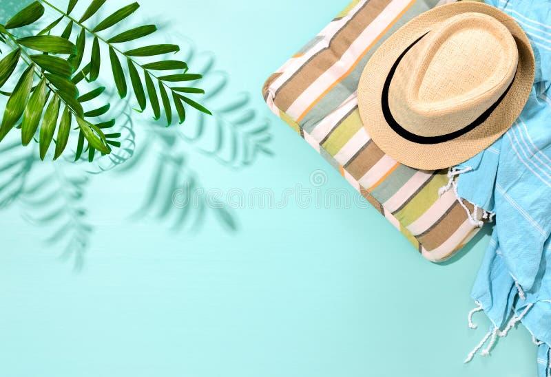 Fond ensoleillé de concept d'été avec une ombre forte de prairie de paume photos libres de droits