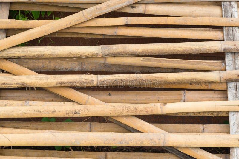 Fond et texture en bambou de mur de barrière photos stock