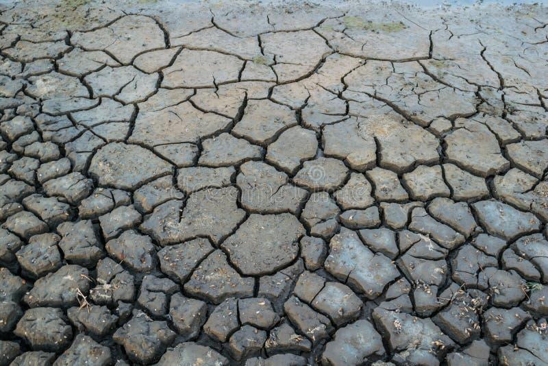 Fond fendu du sol dans la saison aride image libre de droits