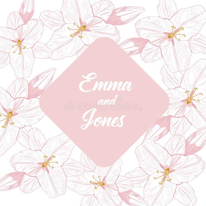 Fond floral avec la ligne rose lis sur le fond blanc Peut être la carte de voeux, invitation de mariage, élément de conception illustration libre de droits