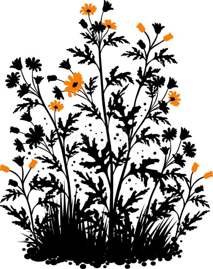 Fond floral avec les camomilles illustration libre de droits