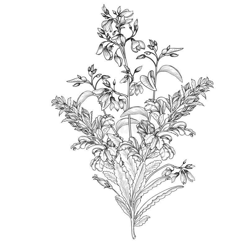 Fond floral Couverture de vintage de bouquet de fleur Carte W de Flourish illustration stock