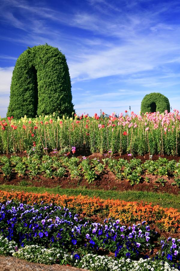 Fond floral de la fleur Garden photos stock