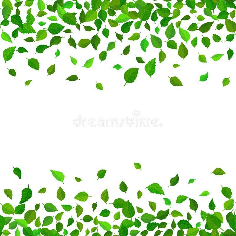 Fond floral de modèle de vecteur sans couture Le vert laisse le contexte La ketmie laisse à vecteur réaliste la frontière qu'on p illustration de vecteur
