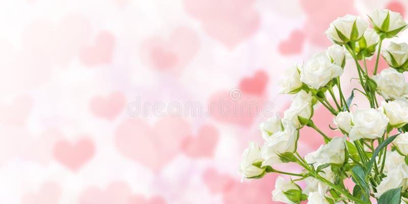 Fond floral de nature de vacances image stock