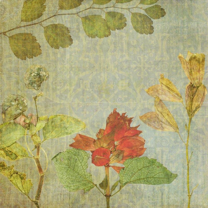 Fond floral de texture de vintage jpg illustration de vecteur