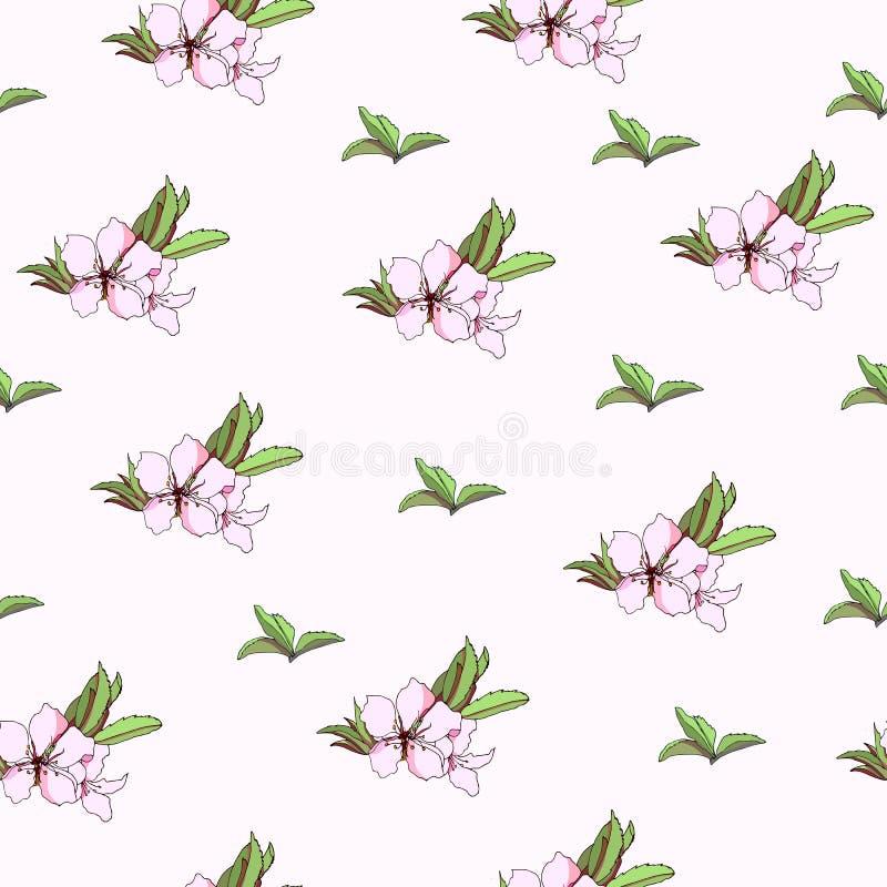 Fond floral des fleurs de ressort Texture l?g?re douce pour la conception des cartes de voeux, tuiles, literie, invitations, salu illustration libre de droits