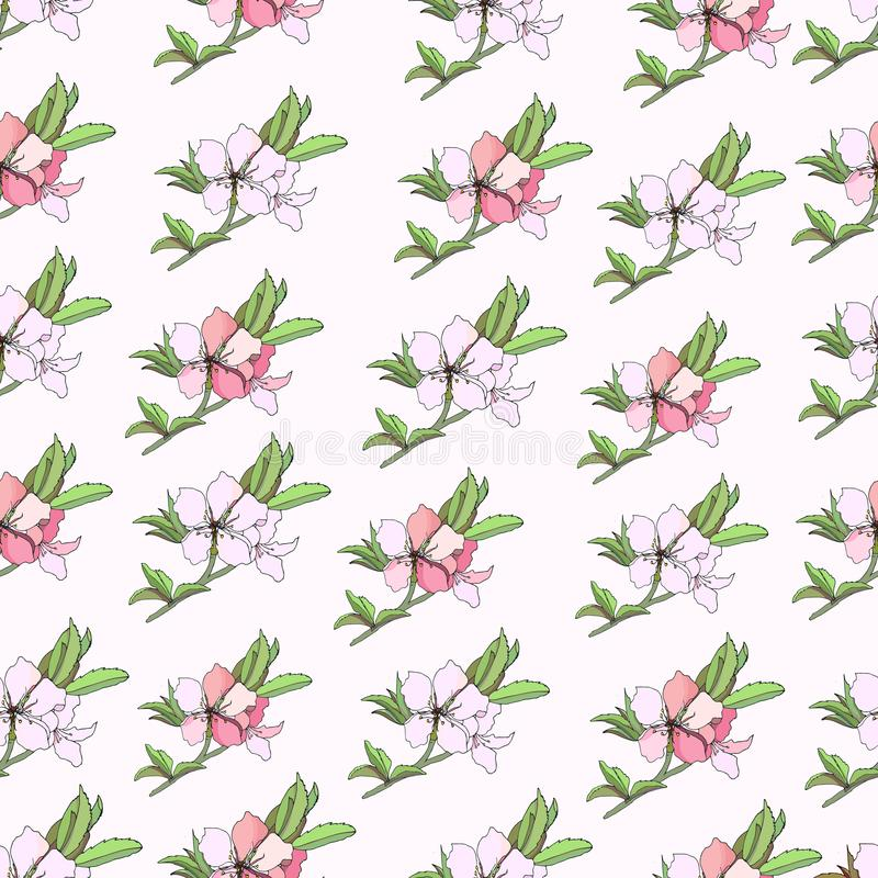 Fond floral des fleurs de rose de ressort Texture l?g?re douce pour la conception des cartes de voeux, tuiles, literie, invitatio illustration libre de droits