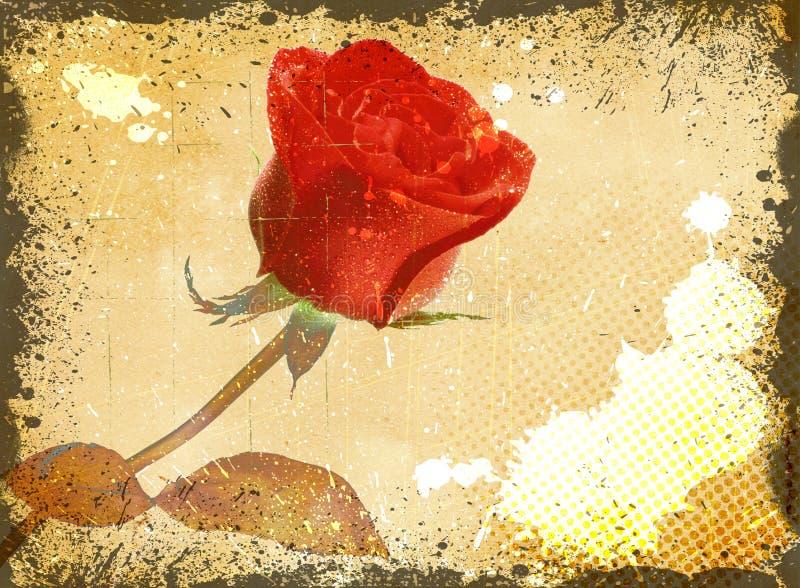 Fond floral grunge avec la rose de rouge illustration stock