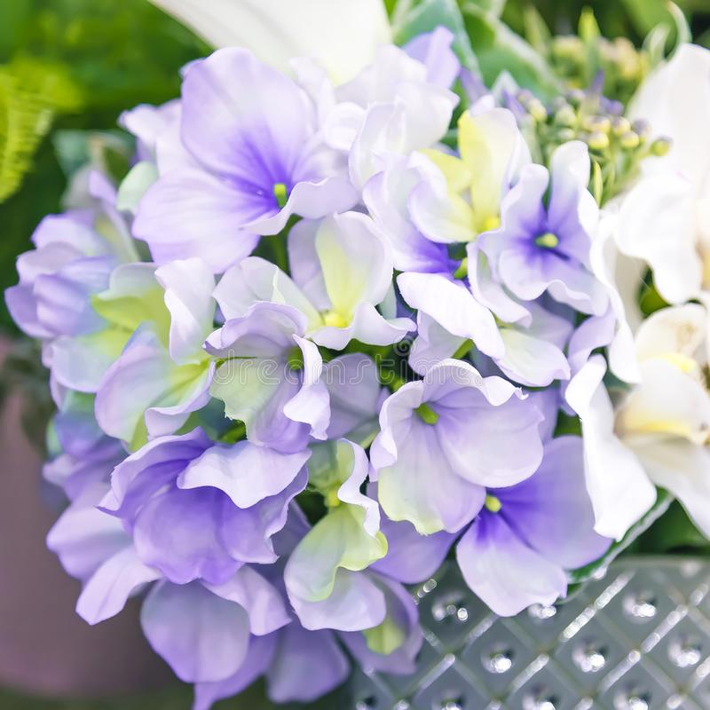 Fond floral Jardin et décor de conception, détails et éléments à la maison de décoration intérieure Fleurs artificielles de plant photographie stock