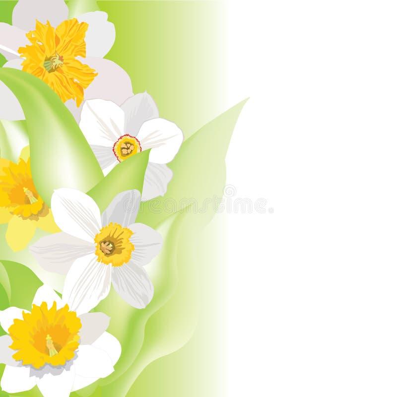 Fond floral. papier peint doux de fleur. illustration libre de droits