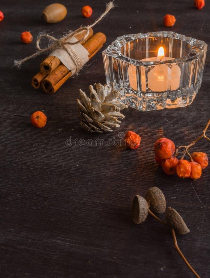 Fond foncé de Noël avec des bougies et des baies de cendre de montagne Cônes de pin blanc S'embranche les glands photo stock