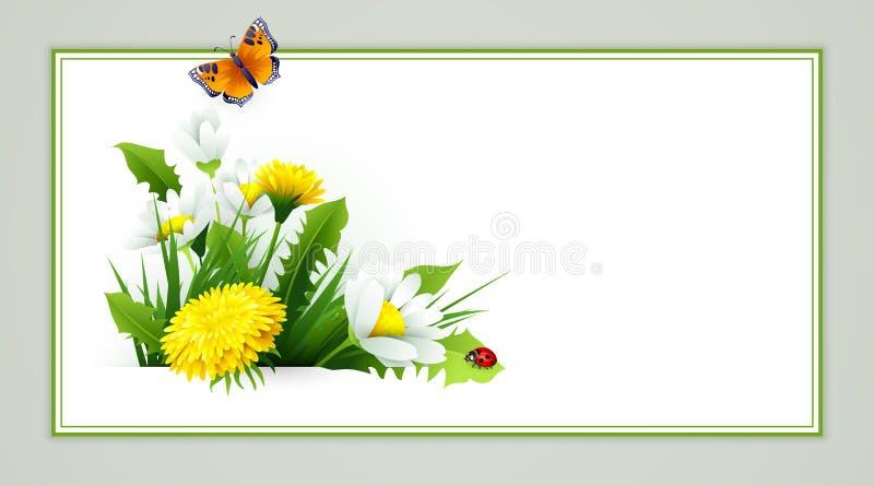Fond frais de ressort avec l'herbe, les pissenlits et les marguerites illustration de vecteur