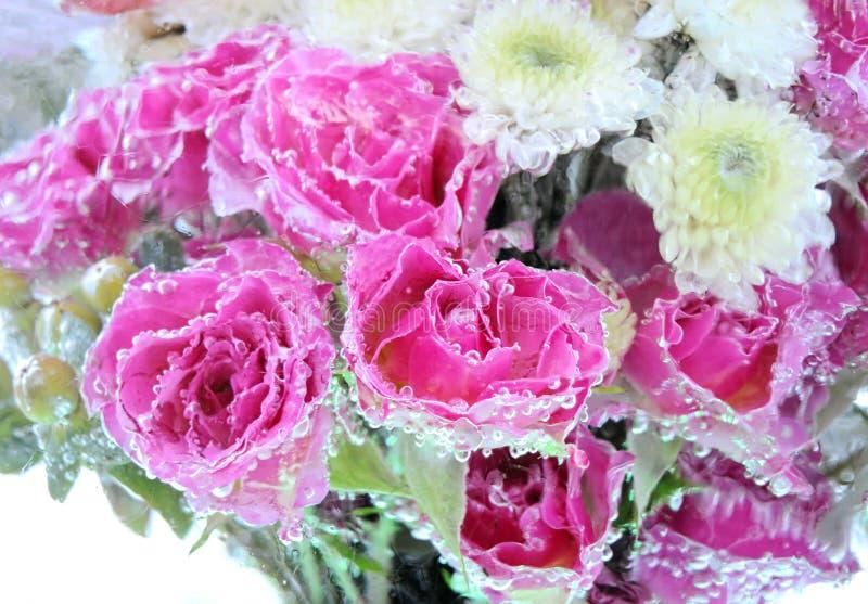 Fond gelé de fleurs photographie stock