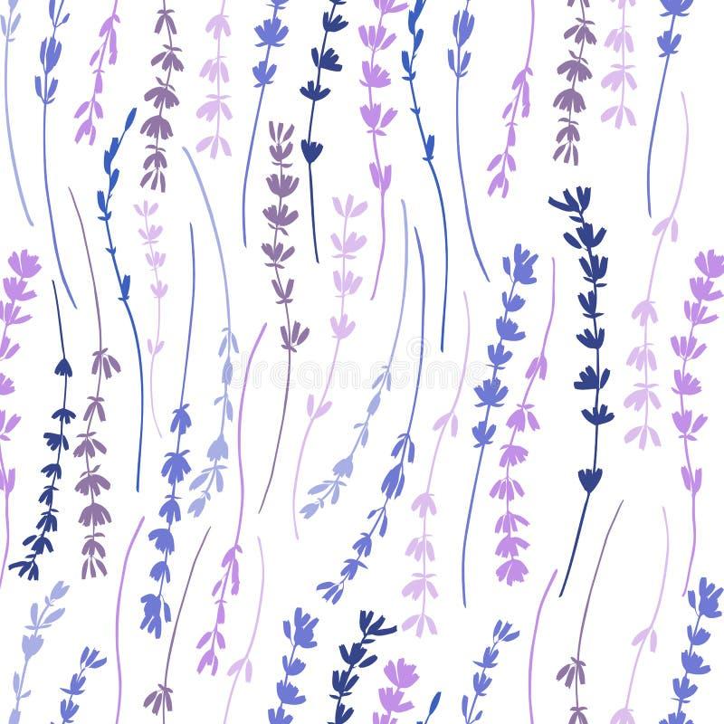 Fond graphique tiré par la main de texture de fleur de modèle sans couture coloré de vecteur de lavande, croquis sur le fond illustration stock