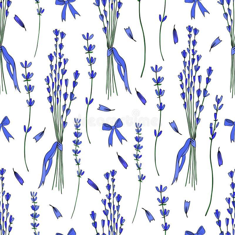 Fond graphique tiré par la main de texture de fleur de modèle sans couture de vecteur de bouquet de lavande, croquis d'isolement  illustration libre de droits