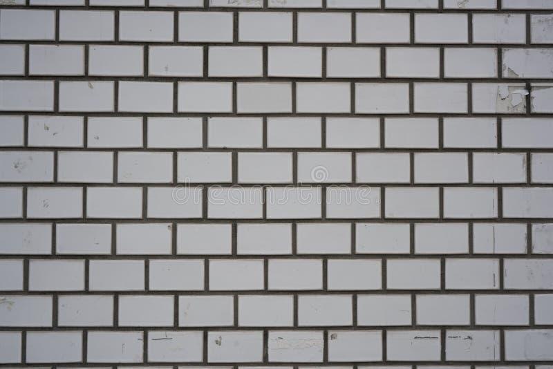 Fond gris blanc de brique de mur au Japon photographie stock libre de droits