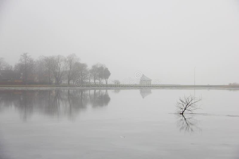 Fond gris de brouillard photographie stock