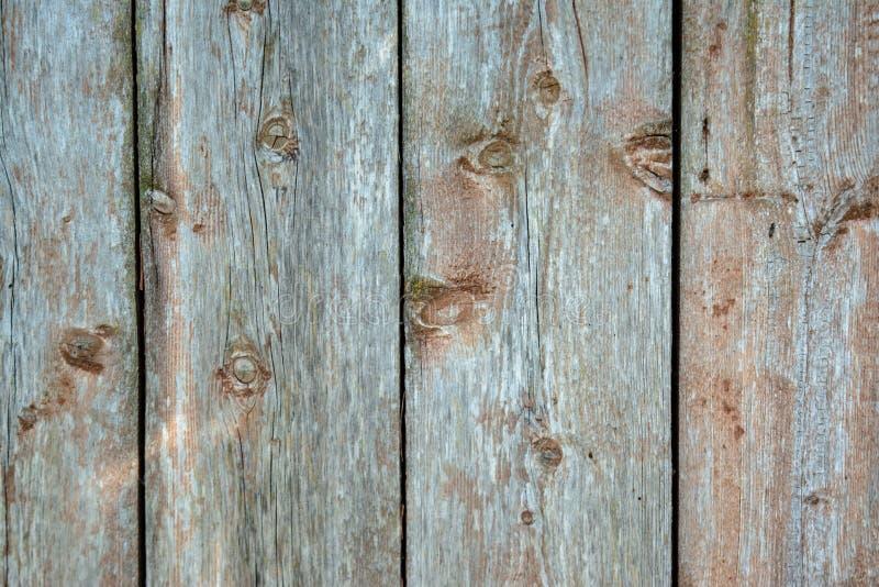 Fond gris en bois de parquet avec des fissures et des fentes image libre de droits