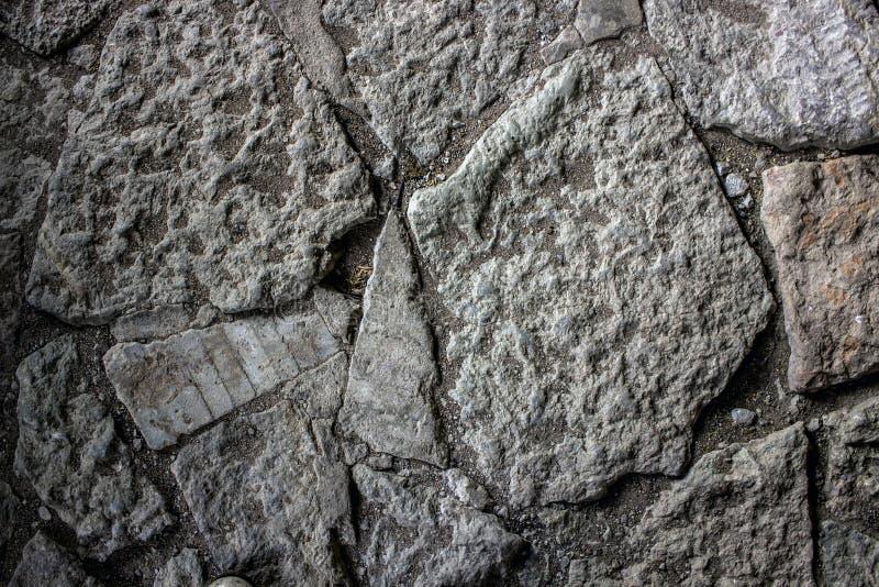Fond gris en pierre de grunge de texture de mur images stock