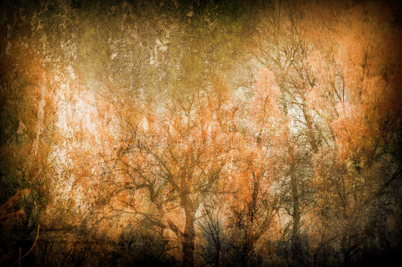 Fond grunge d'art fantasmagorique avec des arbres image stock