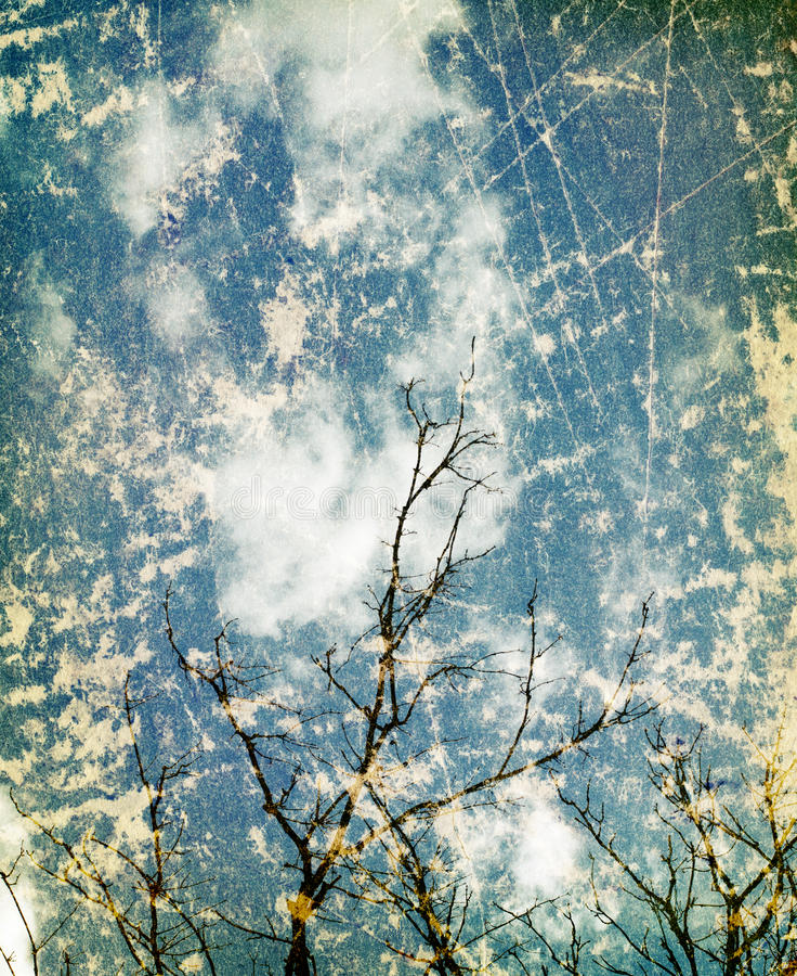 Fond grunge de nature de vintage photo libre de droits