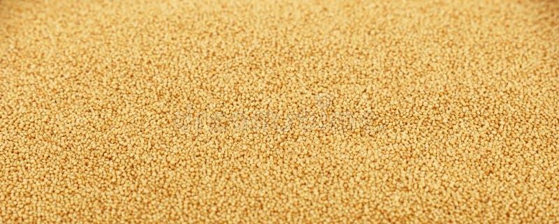 Fond haut étroit de graines de grain d'amaranthe photo libre de droits