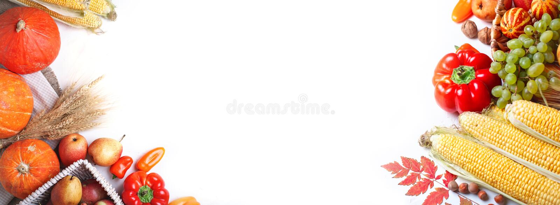 Fond heureux de jour de thanksgiving, table décorée des potirons, maïs, fruits et feuilles d'automne Festival de récolte E photo libre de droits