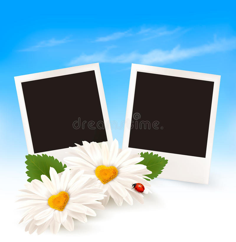 Fond heureux de Saint-Valentin Deux marguerites et photos illustration stock