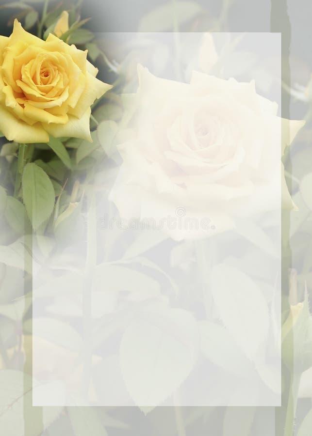Fond jaune de Rose image libre de droits