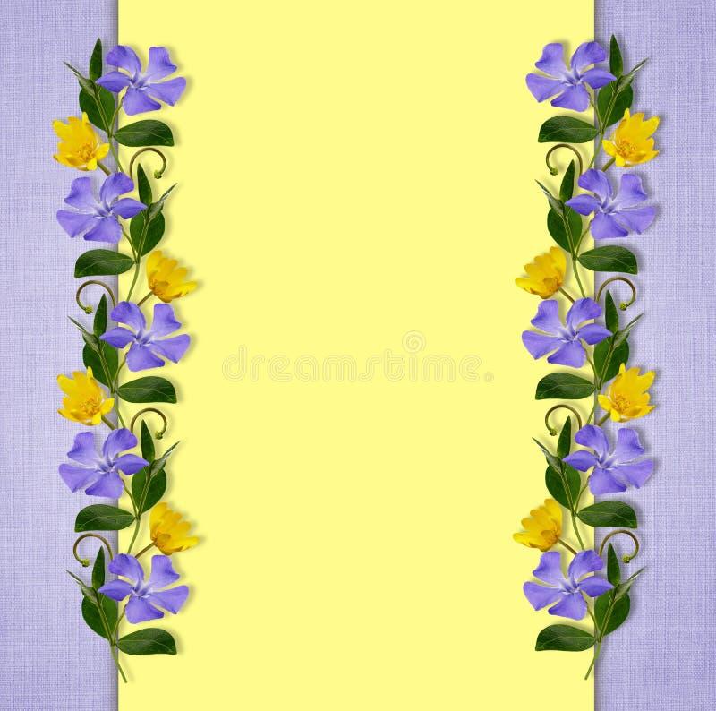 Fond jaune et bleu avec les fleurs sauvages illustration stock