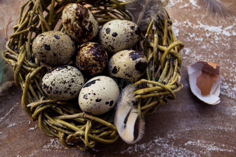 Fond lumineux de Pâques ; Fleurs de panier et de brin d'oeufs de pâques sur le fond bleu de table photographie stock libre de droits