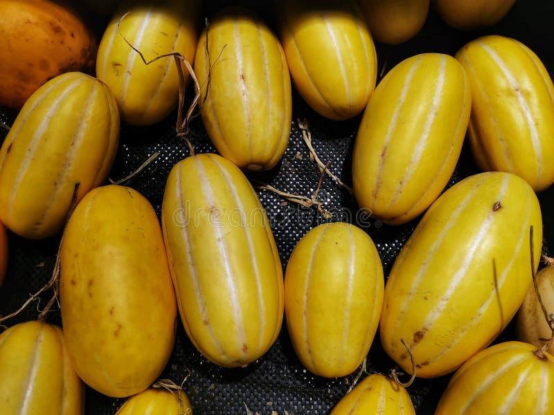 Fond mûr de cantaloups images libres de droits