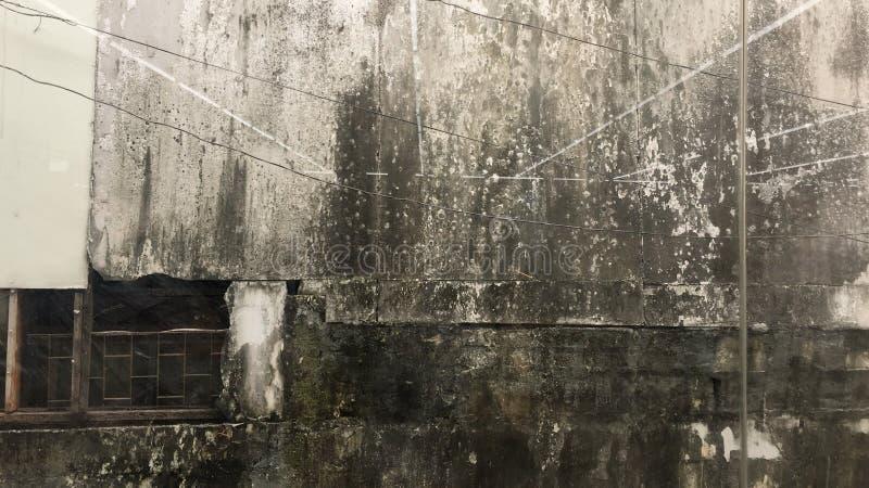 Fond moisi de mur avec de vieilles fenêtres images stock
