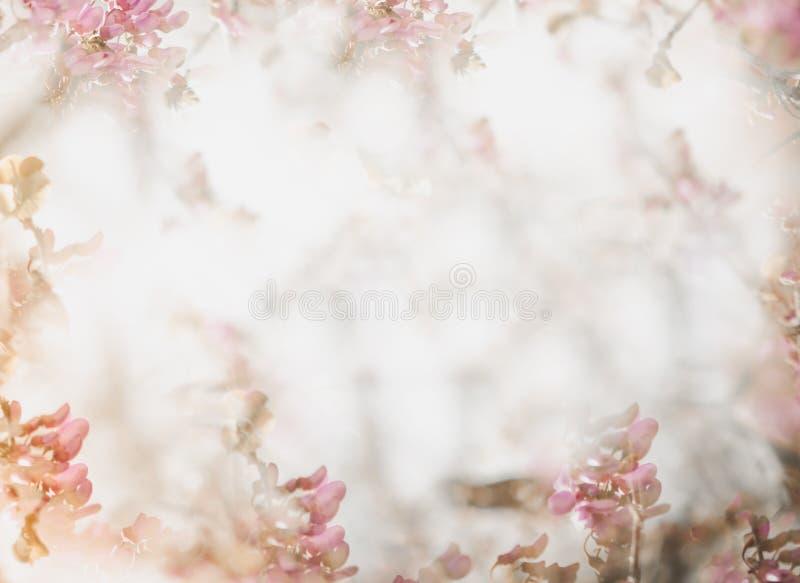 Fond mou de fleur dans le ton en pastel pour la valentine ou le mariage Fond de fleur de ressort de cru Calibre de conception de  photo stock