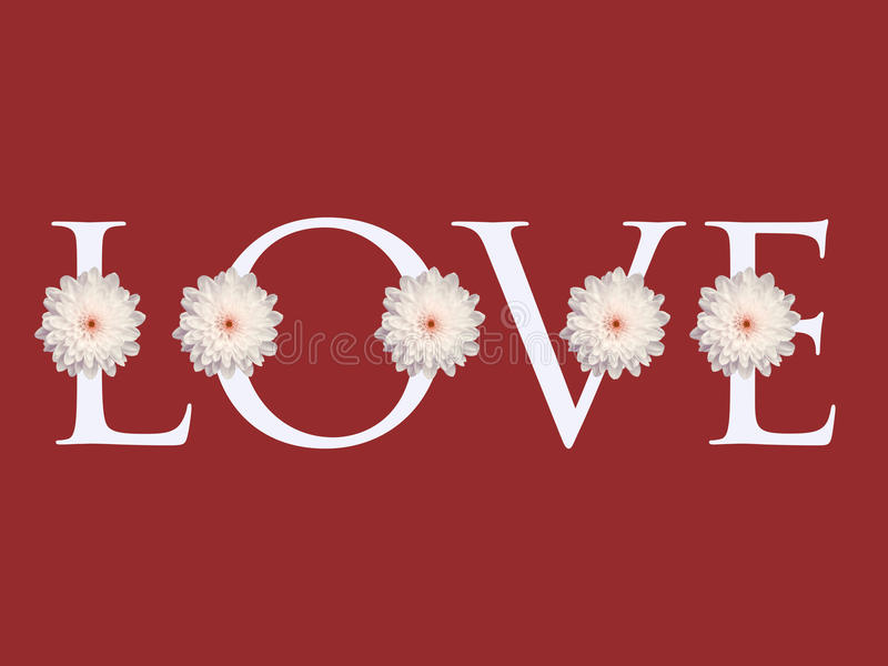 Fond multiple de carte de jour de valentines de conception de lettre d'amour de fleur de marguerite blanche photos libres de droits