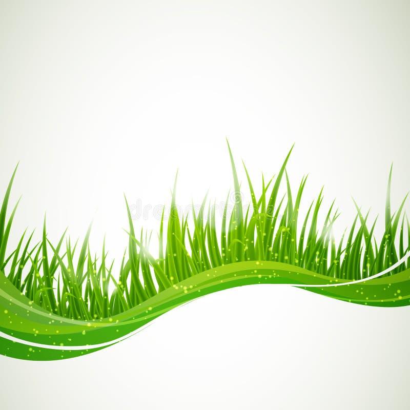 Fond naturel illustration stock