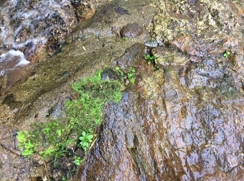 Fond naturel de pierre approprié au fond images stock