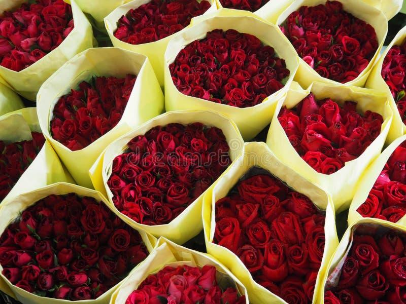 Fond naturel de roses rouges image libre de droits