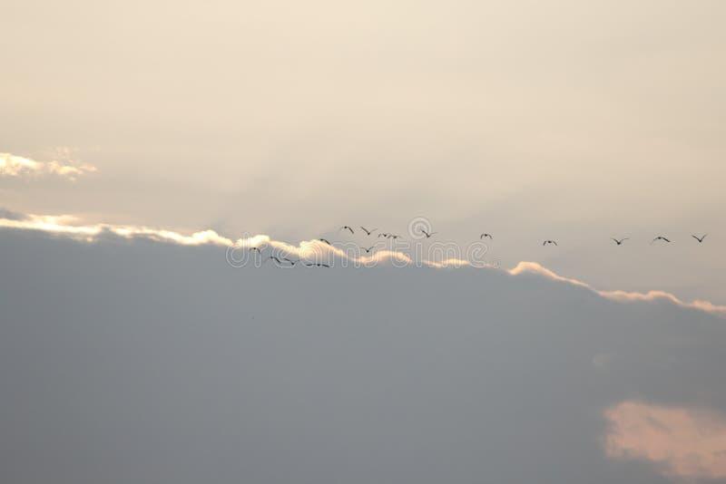 Fond naturel en ciel photographie stock