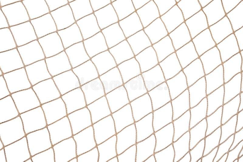 Fond net de poissons photo libre de droits