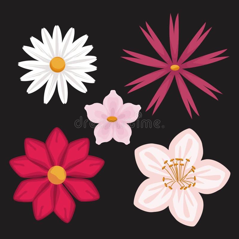 Fond noir avec différents types colorés de fleurs illustration de vecteur