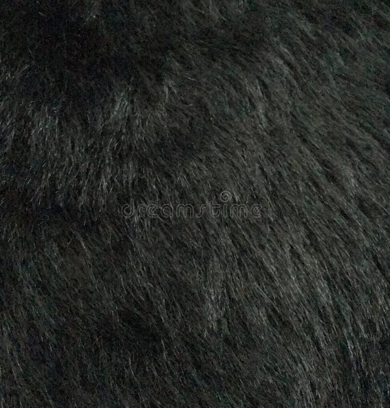 Fond noir de fourrure photographie stock