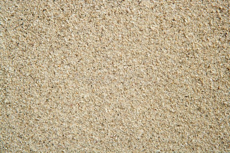 Fond ordinaire parfait de texture de sable de plage images stock