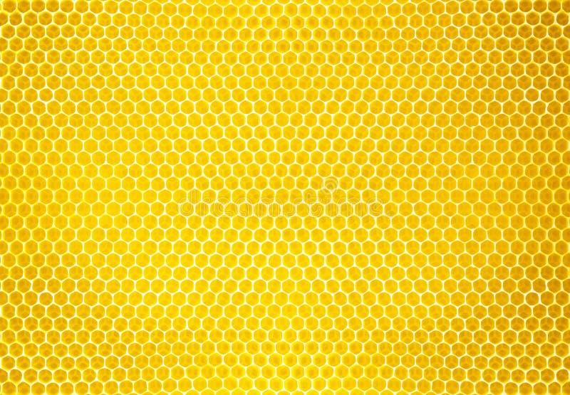 Fond ou texture naturel de peigne de miel photos stock