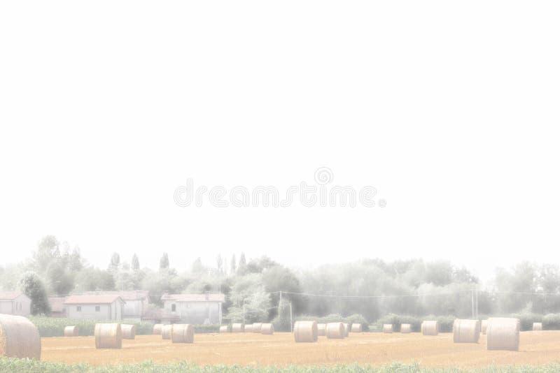 Fond panorama de campagne, champ avec le foin recueilli dans des balles et fermes ci-jointes photo libre de droits